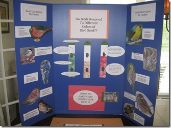 science fair blog 007