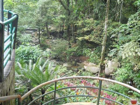 Matang Family Park 7