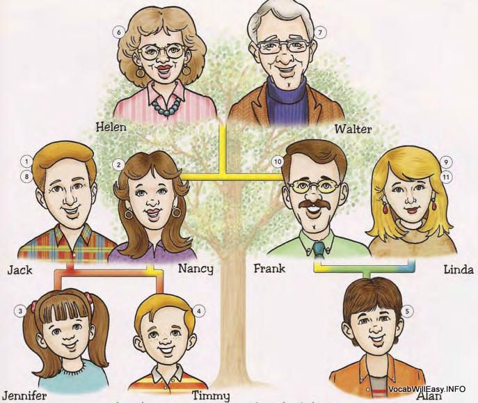 family%20members 1 <!  :en  >Family Tree<!  :  > people english through pictures