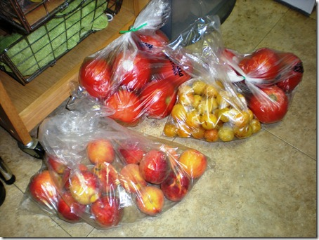 Spoils from the farm share: peaches and maribelle plums as well as some tomatoes.