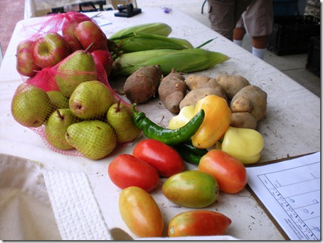 apples, pears, tomatoes, peppers, sweet and regular potatoes, and corn