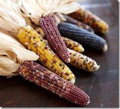 pb corn