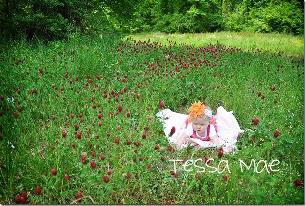 Tessa Mae