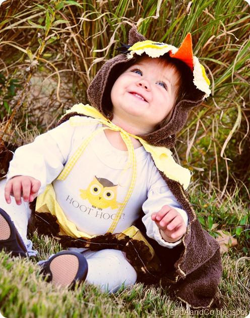 owl closeup Tess