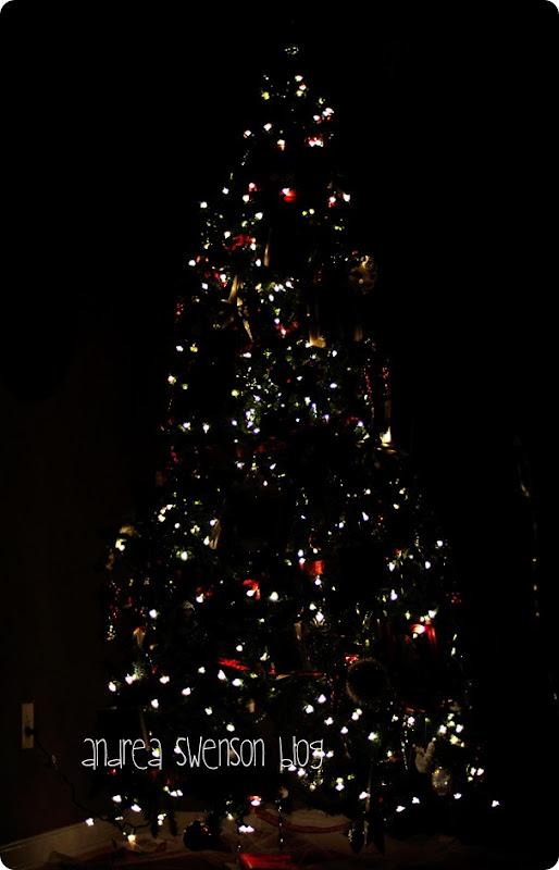 tree at night 3 cr