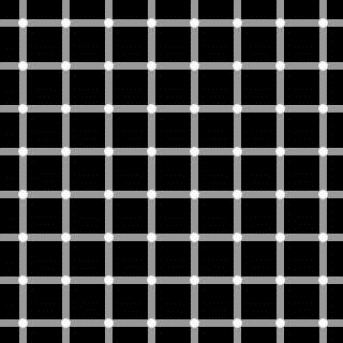 grid-illusions[1]