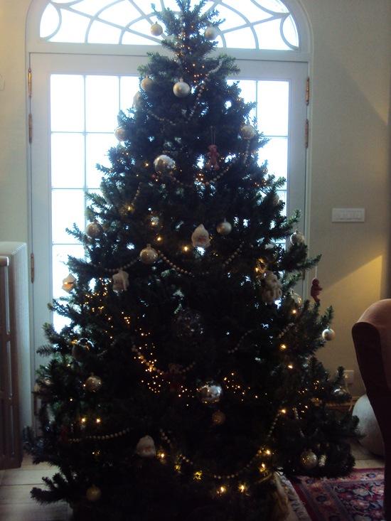 Foto 20 december 2010 005