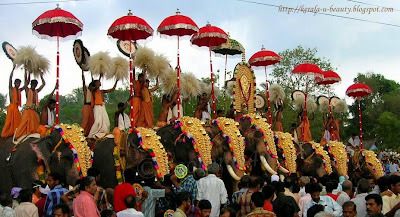 Kuda mattam ceremony during Pooram festival