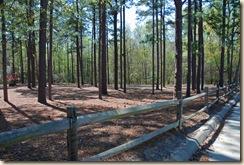 0Rail Fence