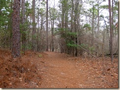 Walking Trail at Sesqui