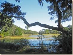 Entry Marsh