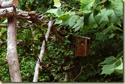 arbor bird house