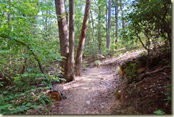 02 trail maintenance