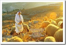 Charis_Israel_01