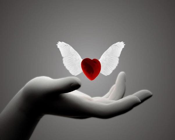 heartwingedinhand