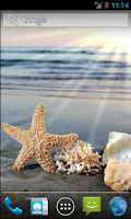 Screenshot of Sea Star HD. Live Wallpaper.