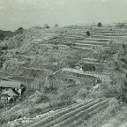 八木の山風景1964、昭和39年-中山01.jpg