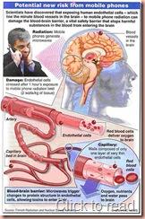 cellphonecancer