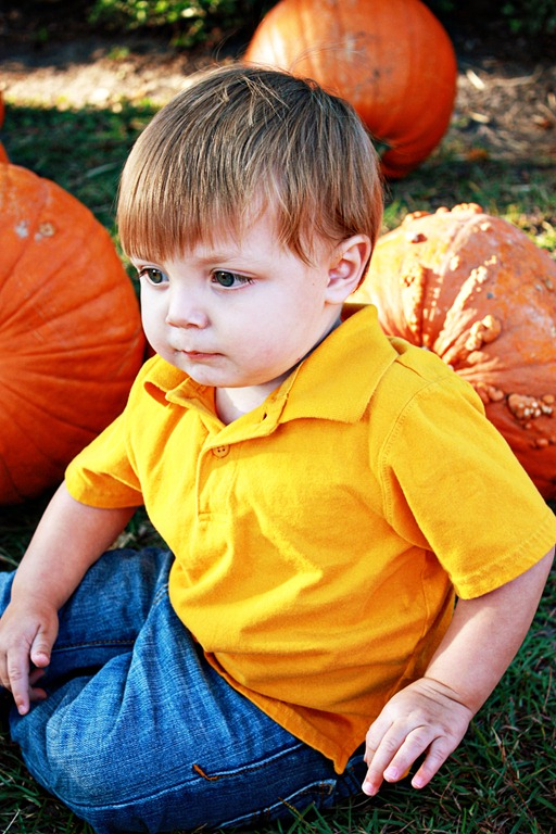 PumpkinPatch 064