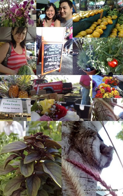 www.RickNakama.com KCC Farmer's Market