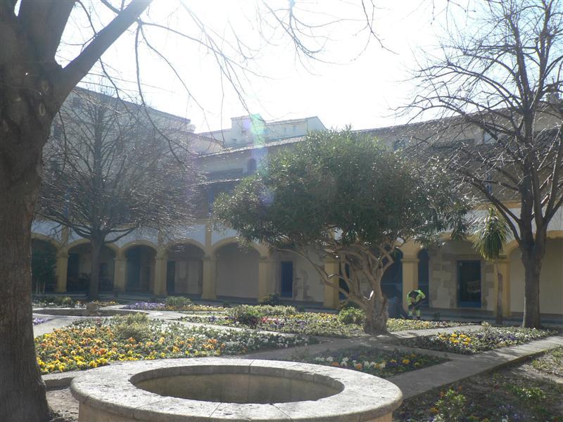 Van Gogh garden retreat