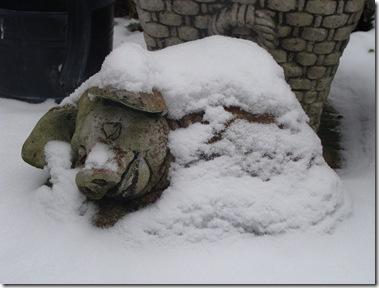 sneeuw4 nov 2010