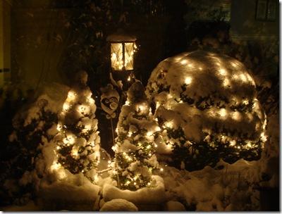 sneeuw1 dec2010