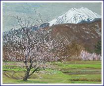 「常念、梅と桜と」F15