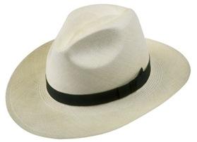 panama-hat-610152058