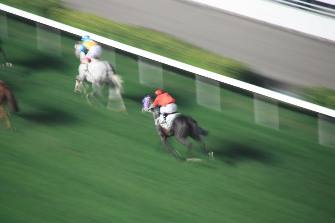 Horse Race at Happy Valley