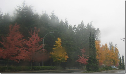 fall 012