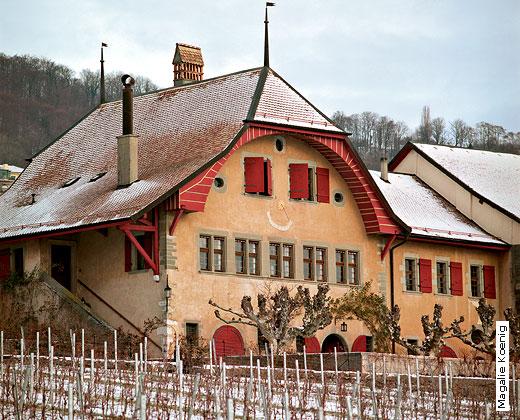 Domaine de Autecour - Mont-sur-Rolle
