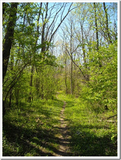 Spring 2010 Loveland, Ohio