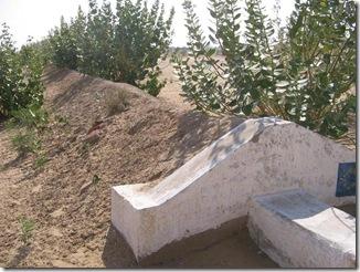 Plantation at Khandin