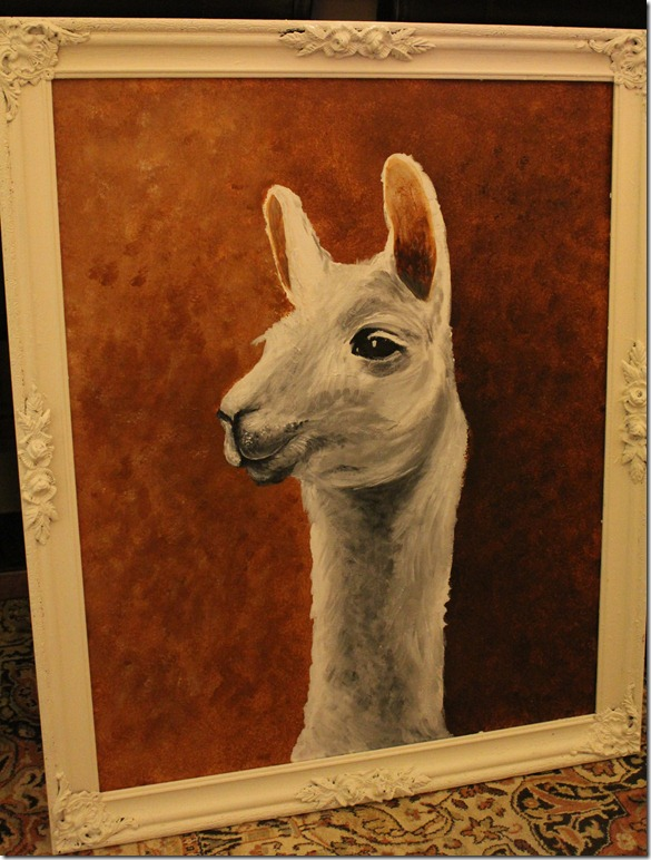 llama