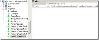 SPM 2007 Publishin Page Properties