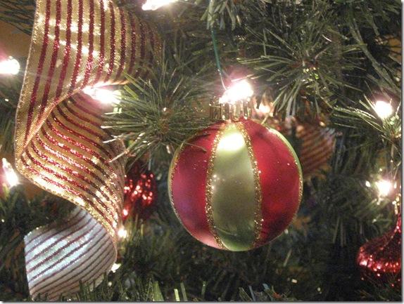 Christmas 12-8-09 027