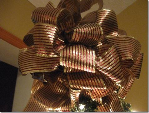 more christmas 2009 044