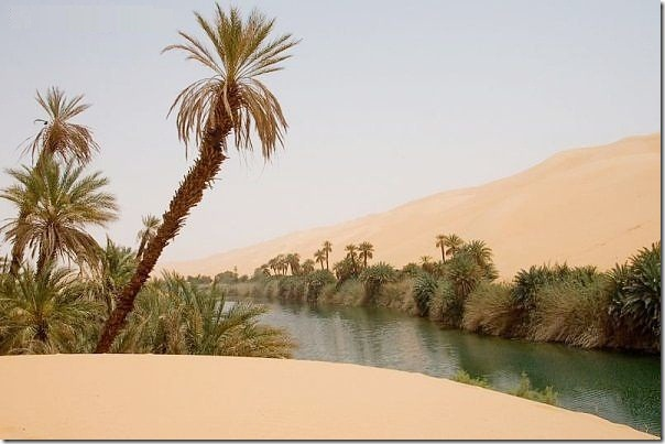 20 most incredible desert oasis5