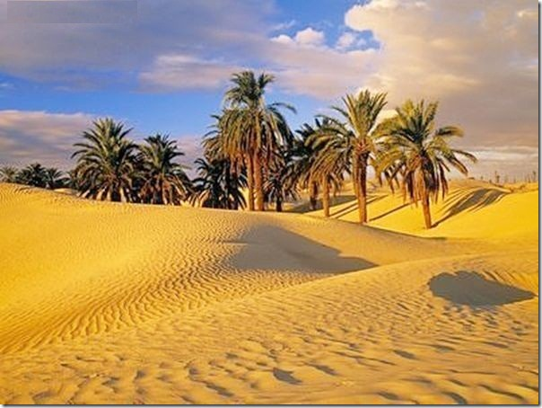 20 most incredible desert oasis12