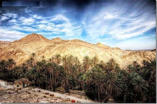 20 most incredible desert oasis15