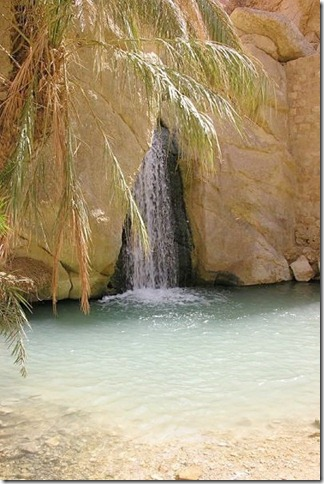 20 most incredible desert oasis17