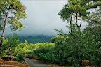 Akyaka da yağmur sonrası
