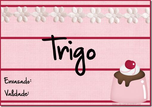 trigo_mod1