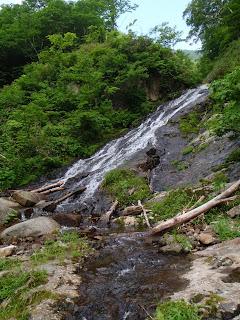 滑床となった本流に左岸から大きな滑滝が合流してくる。よく見ると右岸にはブル道の跡らしき物がある。