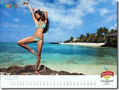 Kingfisher Calendar 2011_2