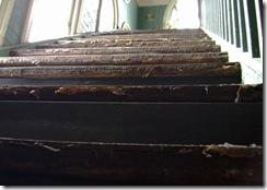 Steps DSC01414(1)