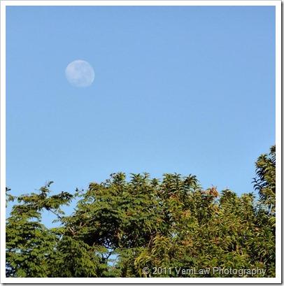 Moonp1010497