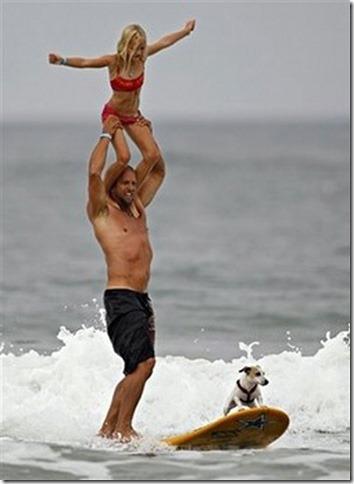 perros surf migallinero (6)
