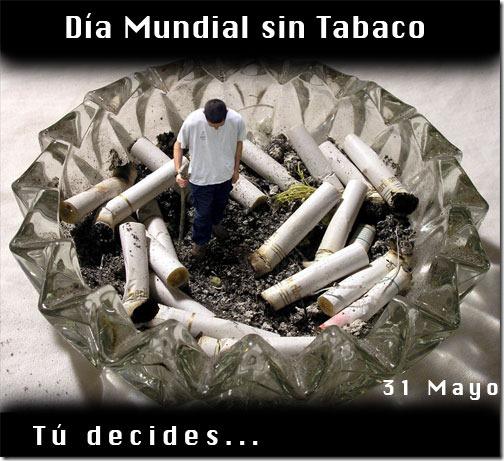 sin tabaco migallinero.blogspot (23)